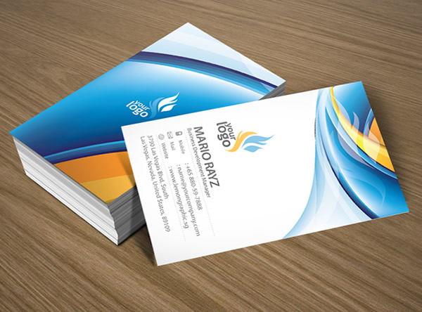Fire and Ice Corporate Business Card