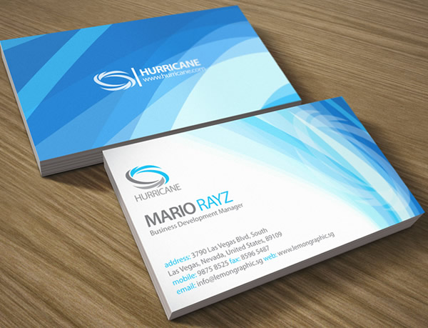 Hurricane Corporate Business Card