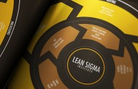 Lean-six-sigma-information-design-infographic-poster-01