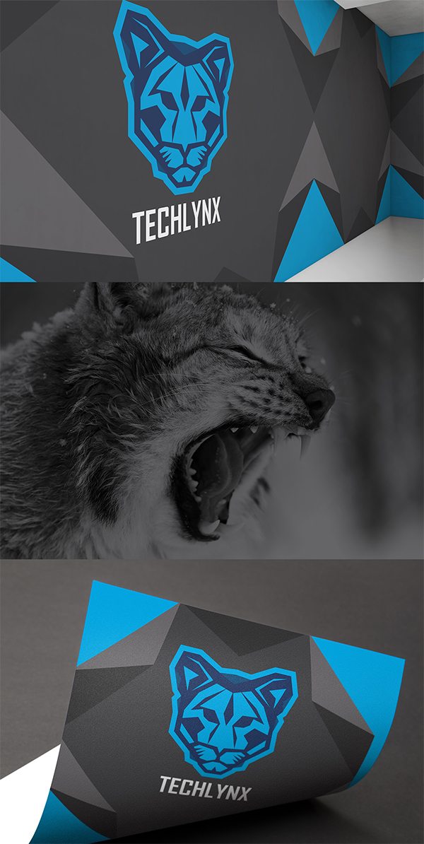 Techlynx branding and identity design